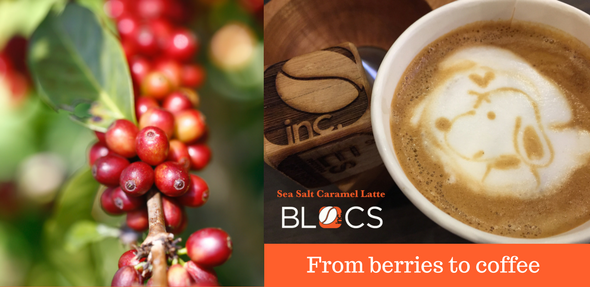 Berries to coffee